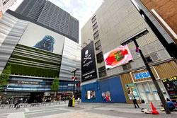 新宿シネシティ広場